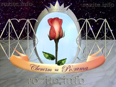 Светът на розите