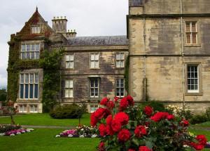 замък с рози