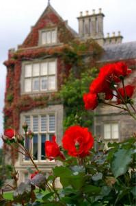 рози и замък